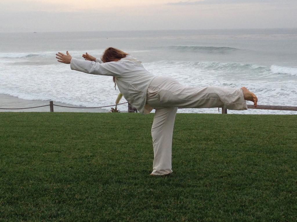 Yoga Warrior Series